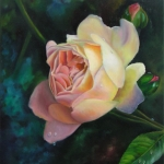Rose Ghislaine de Feligonde - oil flower painting by Doris Joa