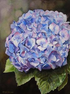 Blue Hydrangea Flower Painting