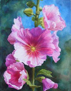 Pink Hollyhock, realistic painted Hollyhock in watercolor flower painting