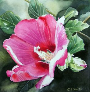 Pink HybiscusRealistic Watercolor Flower Painting