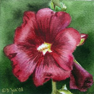 Red Hollyhock, small flower watercolor painting