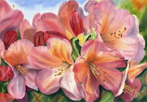 Floral Painting of a beautiful Rhododendron in Watercolor