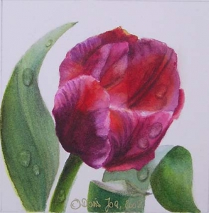 Botanical Watercolor Floral Painting, Pink Purple Tulip with leaves and raindrops, stunning realism in watercolor