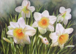 Flower Painting in Watercolor of White Daffodils with full blooms, buds and Ladybug