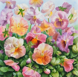 Colourful Pansies, Flower Painting of pink and yellow and purple pansies in watercolor