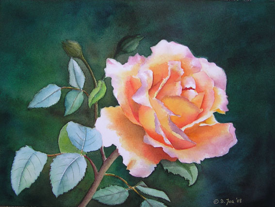 Orange rose with light blue leaves on dark background - Watercolor Rose - Realistic Watercolor of an orange yellow Rose by Doris Joa