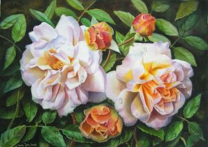 rose-ghislaine-de-feligonde-watercolor