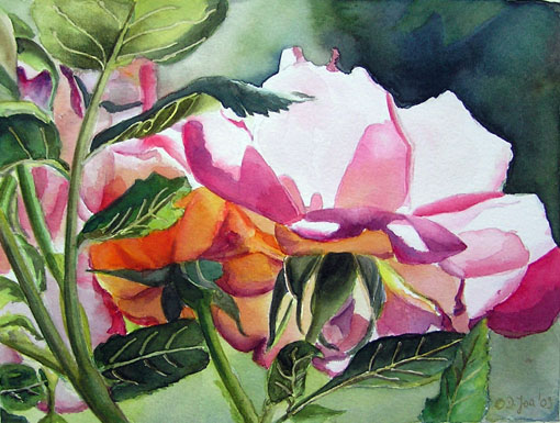 Rose Watercolor Painting - Rose Amelita Renaissance by Doris Joa