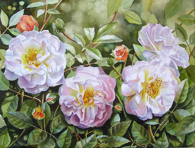 rose-ghislaine-de-feligonde-iii