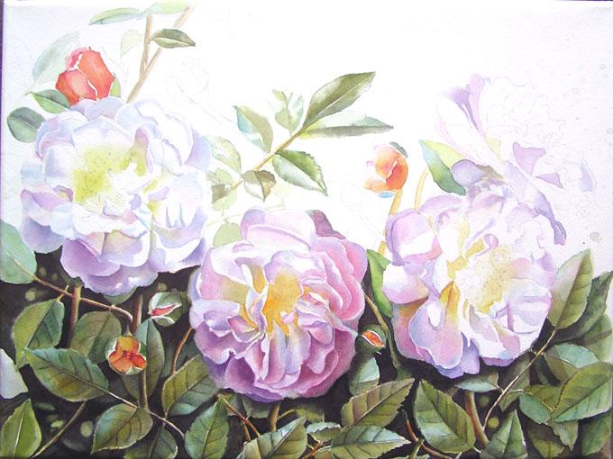 rose-ghislaine-wip-neu4