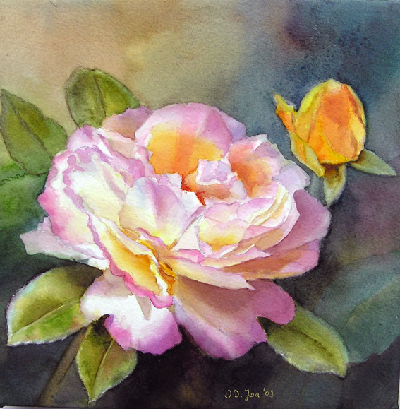 rose gloria dei watercolor painting by doris joa doris. Black Bedroom Furniture Sets. Home Design Ideas