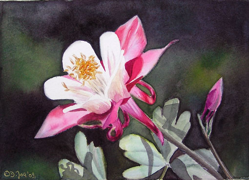 Akelei in Aquarell - Columbine in watercolor - small flower painting - Blumengemälde