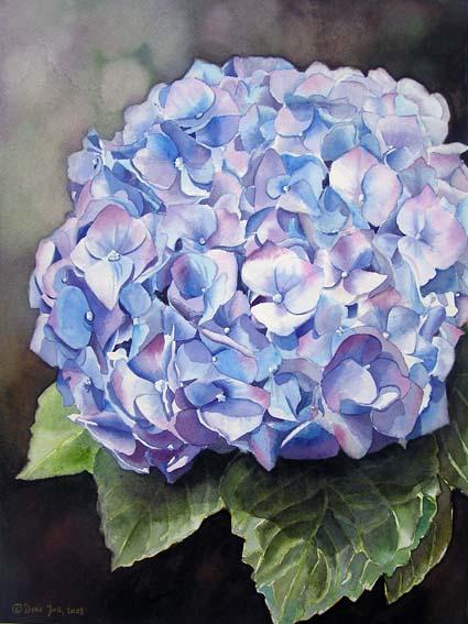 Watercolor Flower Painting - Blue Hydrangea II - Original Aquarellgemälde, blaue Hortensie