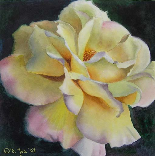 rose gloria dei 6x6 watercolor oil paintings of roses and flowers dvds online videos. Black Bedroom Furniture Sets. Home Design Ideas