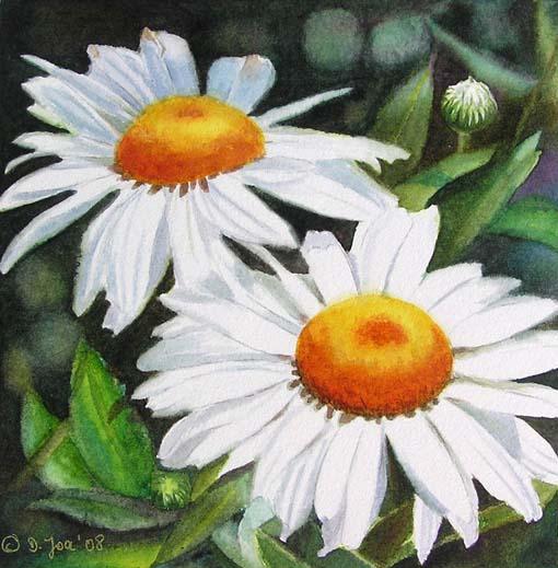White daisies floral flower watercolor painting weiße margariten