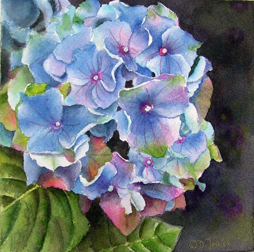 Blue Hydrangea in watercolor - flower painting - Blaue Hortensie - Aquarellmalerei - Doris Joa