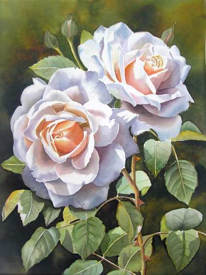 Rose Clair Renaissance - white apricot Rose - Original watercolor painting by Doris Joa