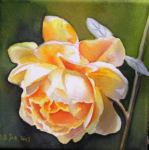 Rose Golden Celebration - watercolor painting