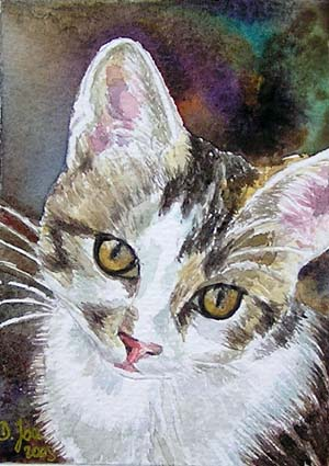 Kit Cat, white and grey, watercolor painting, ACEO size, Original