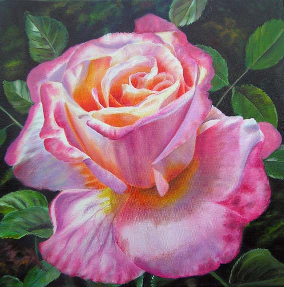 Large Pink Rose oil painting - original art - flower painting by Doris Joa
