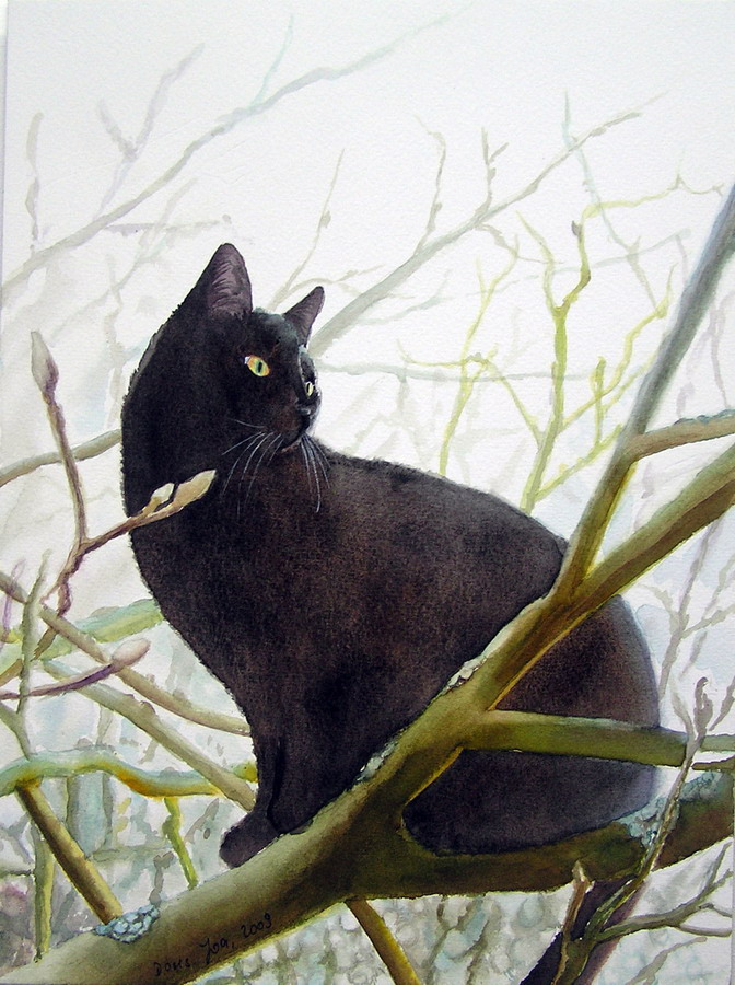 Black cat sitting in tree - watercolor realistic fine art painting by Doris Joa