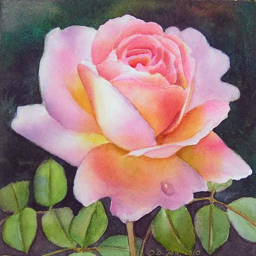 Two new pink rose paintings and a demo at susanart forum today mightylinksfo