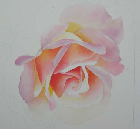 Pink rose painting images galleries for How to paint a rose in watercolour