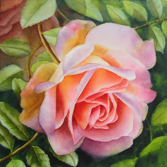 Pink rose watercolor painting doris joa watercolor for How to paint a rose in watercolour