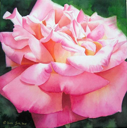 Gardendreams gartentr ume and a pink rose painting in for How to paint a rose in watercolour