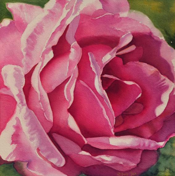 Purple Rose Painting in Watercolor by Doris Joa