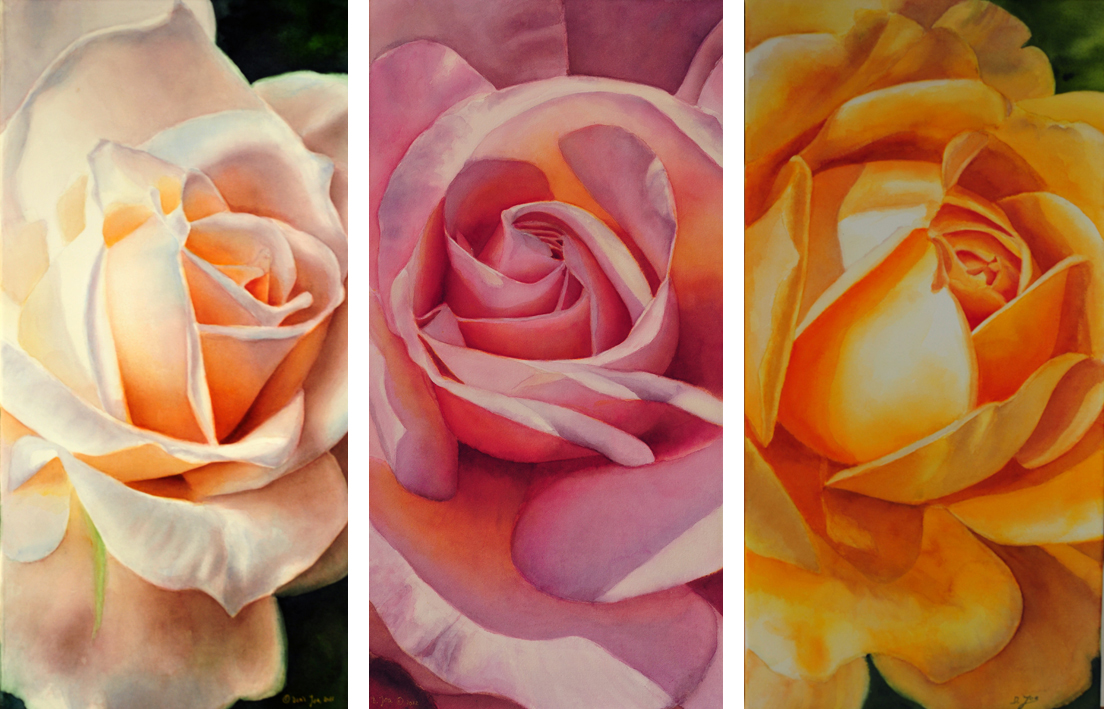 yellow pink white rose - realistic roses in watercolor