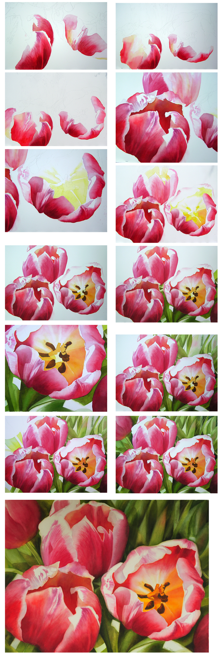 Tulips flower paintings in watercolor step by step photos for How to paint flowers with oil paint