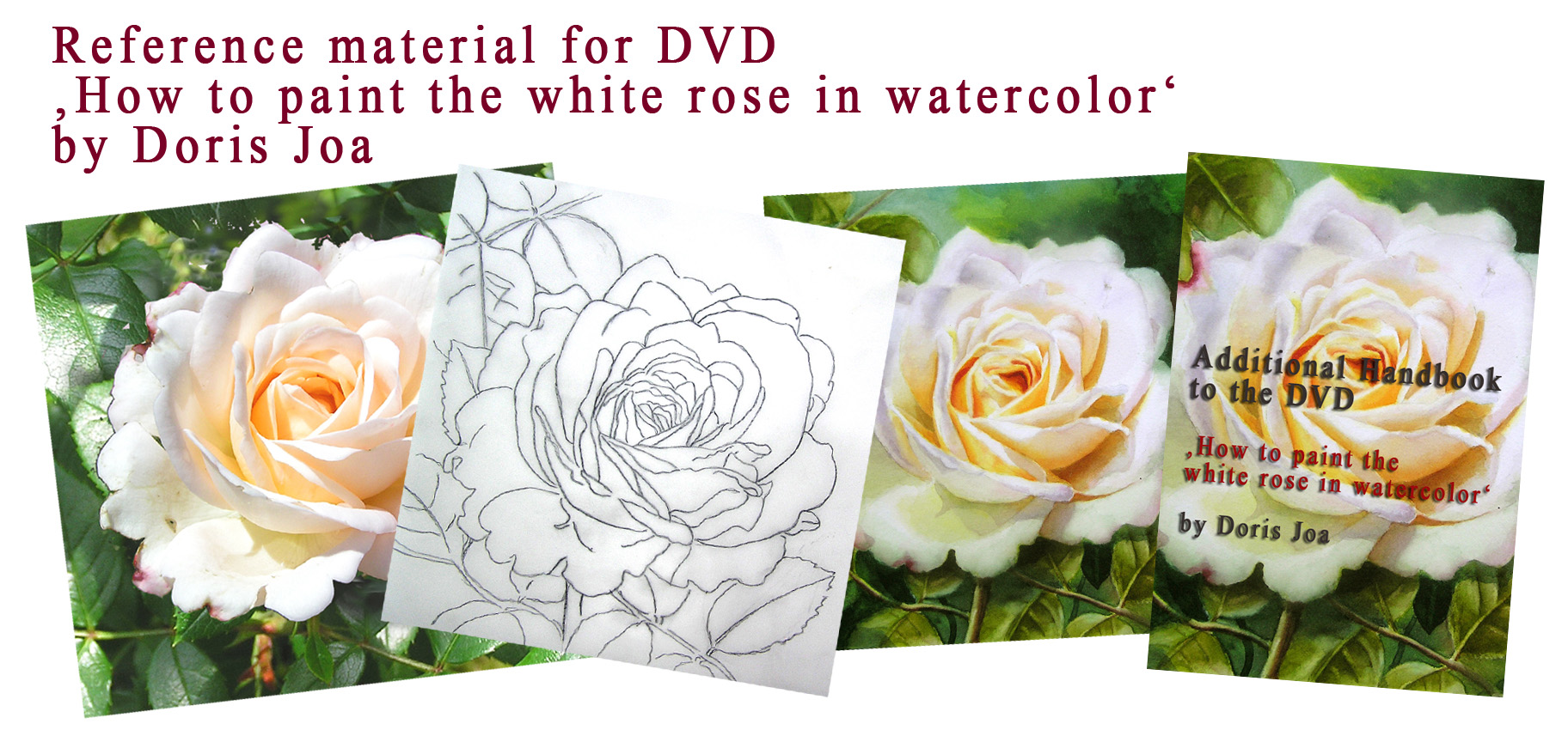 Reference material for Doris Joa's Watercolor DVD 'How to paint the white rose in watercolor'