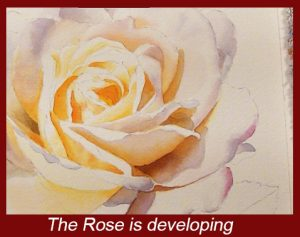 Create the illusion of reality with this Watercolor DVD Lesson on painting white Roses