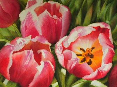 Pink Red Tulips in Watercolor - large realistic Flower Painting by Doris Joa