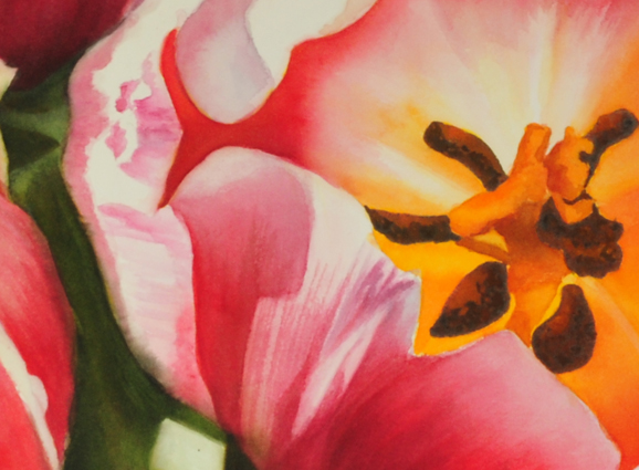 tulips_detail_bearbeitet-1