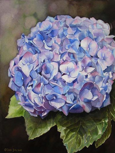 Blue Hydrangea - Watercolor Flowers Painting - how to paint flowers by Doris Joa