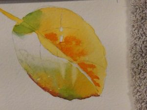 Demonstration on how to paint leaves in watercolor - Art Instruction