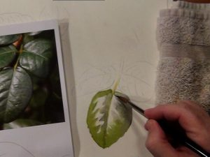 Painting Instruction for Leaves - Learn how to paint leaves