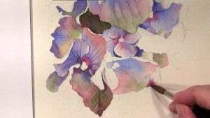 Step-by-Step of painting a blue hydrangea in watercolor - as online video lesson