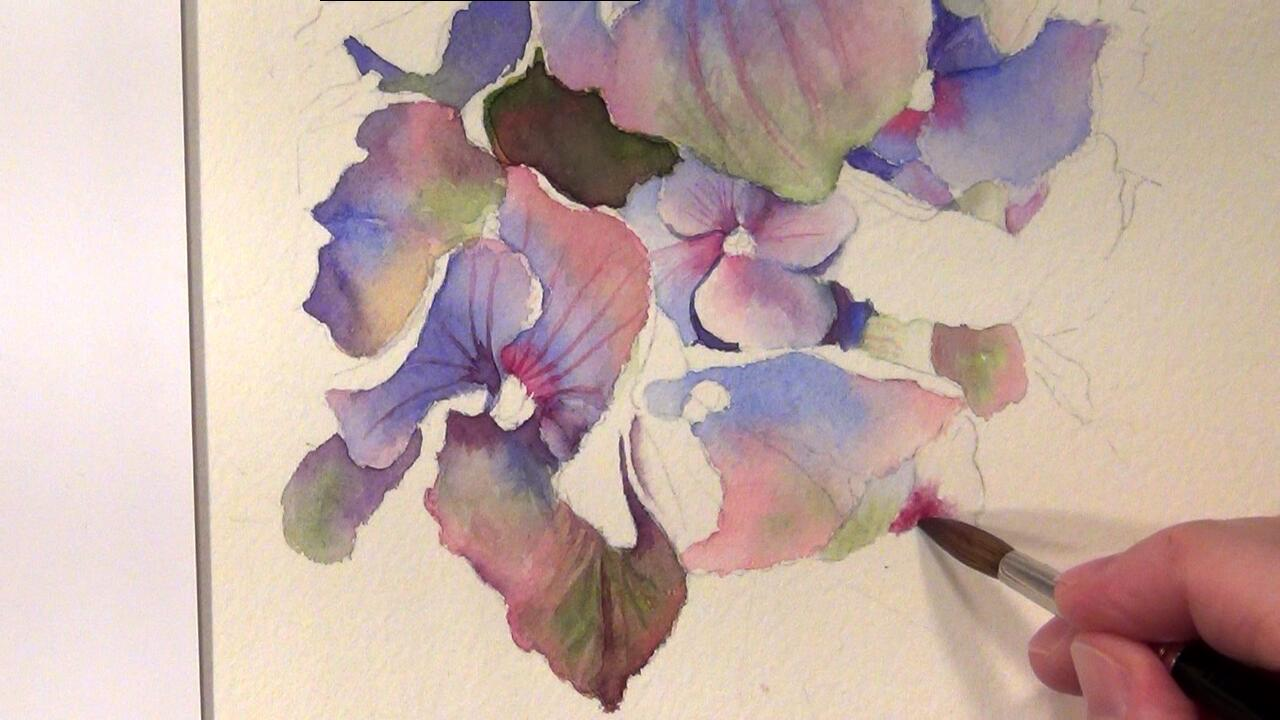 How to paint hydrangeas watercolor online tutorial for Watercolor tutorials step by step