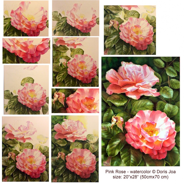 Learn to paint roses step by step in watercolor with indepth instruction, colour mixes, colour sharing, online or on DVD