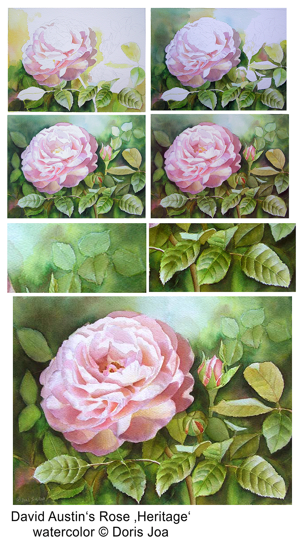 how to paint roses watercolor rose painting stepbystep