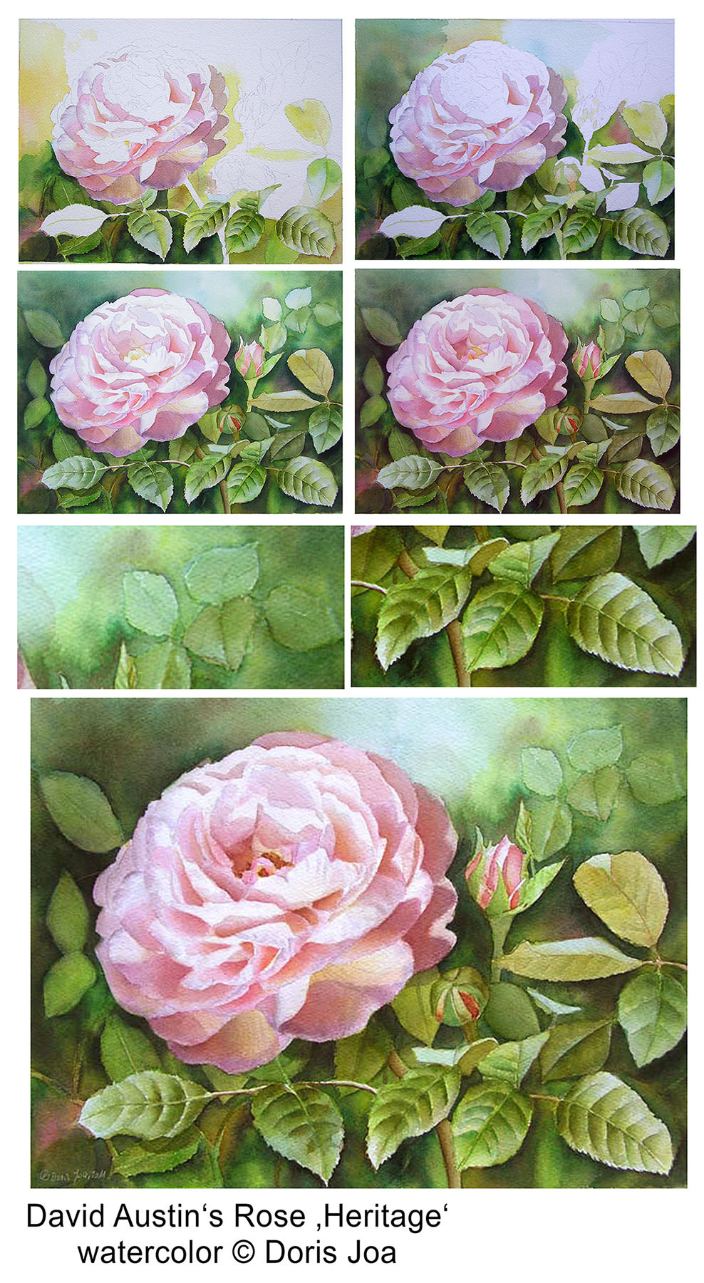 How to paint roses watercolor rose painting step by step for How to paint a rose step by step