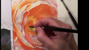 Paint the details in the center of the orange glowing rose for watercolor dvd and online video lesson