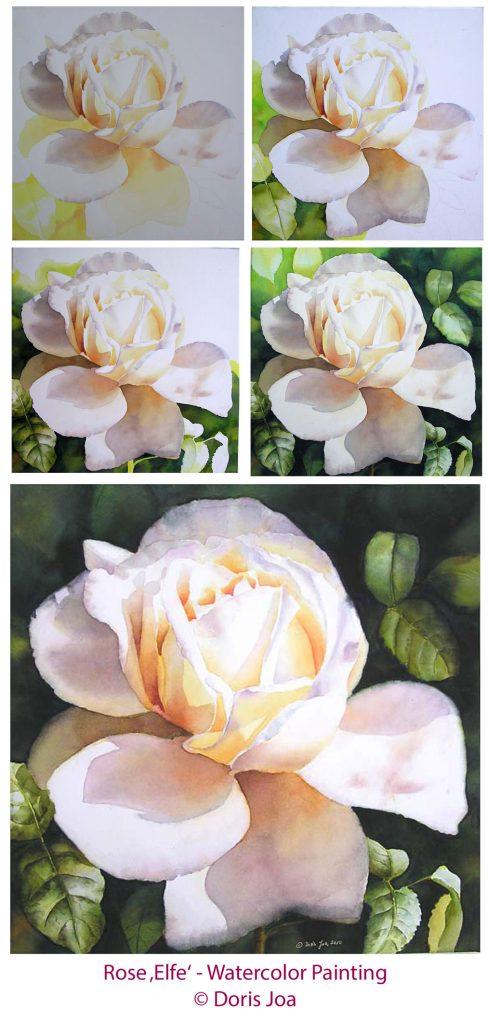 Rose Elfe - Watercolor Painting of a creamy white rose with leaves and dark background