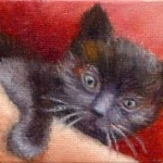 Little black kitten laying undet blankets, small oil painting of a kitten by Doris Joa