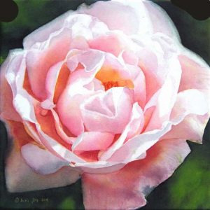 The beautiful climbing rose New Dawn painted as a close up on watercolor canvas