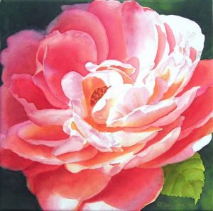 Rose affected by sunshine painted on canvas, Rose Watercolor Painting