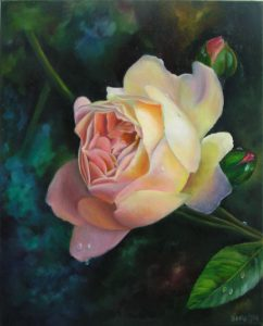 Stunning single Rose Painting of a french Rose, white and peach coloured, Oil Painting